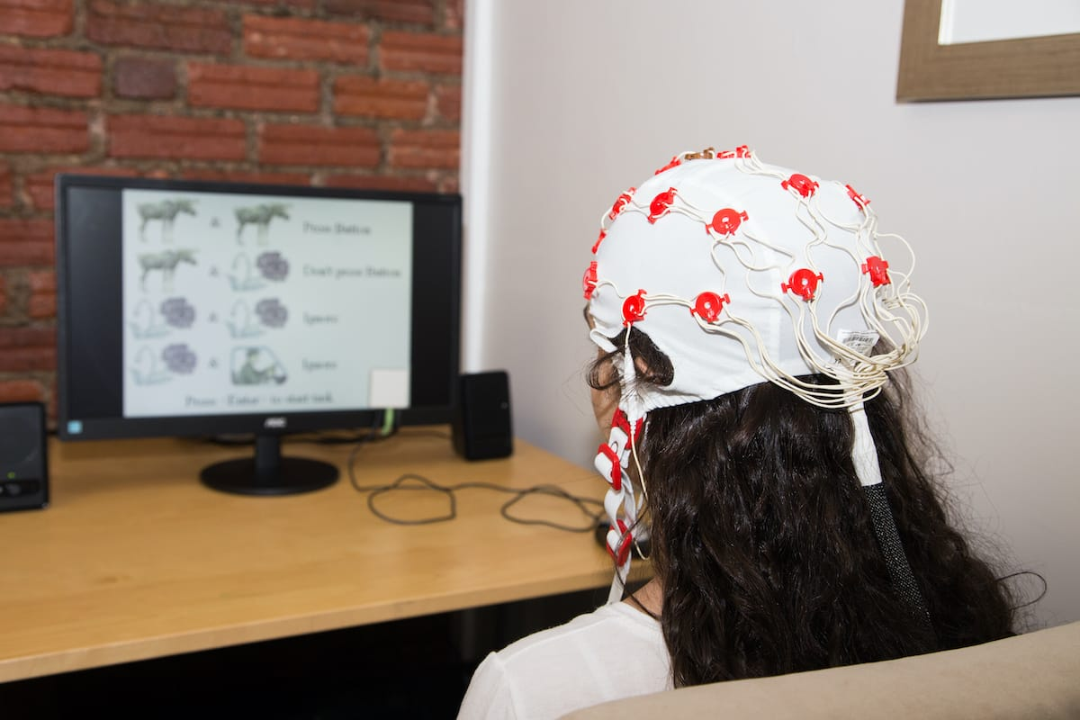 Interpretación de EEG, qEEG y ERP